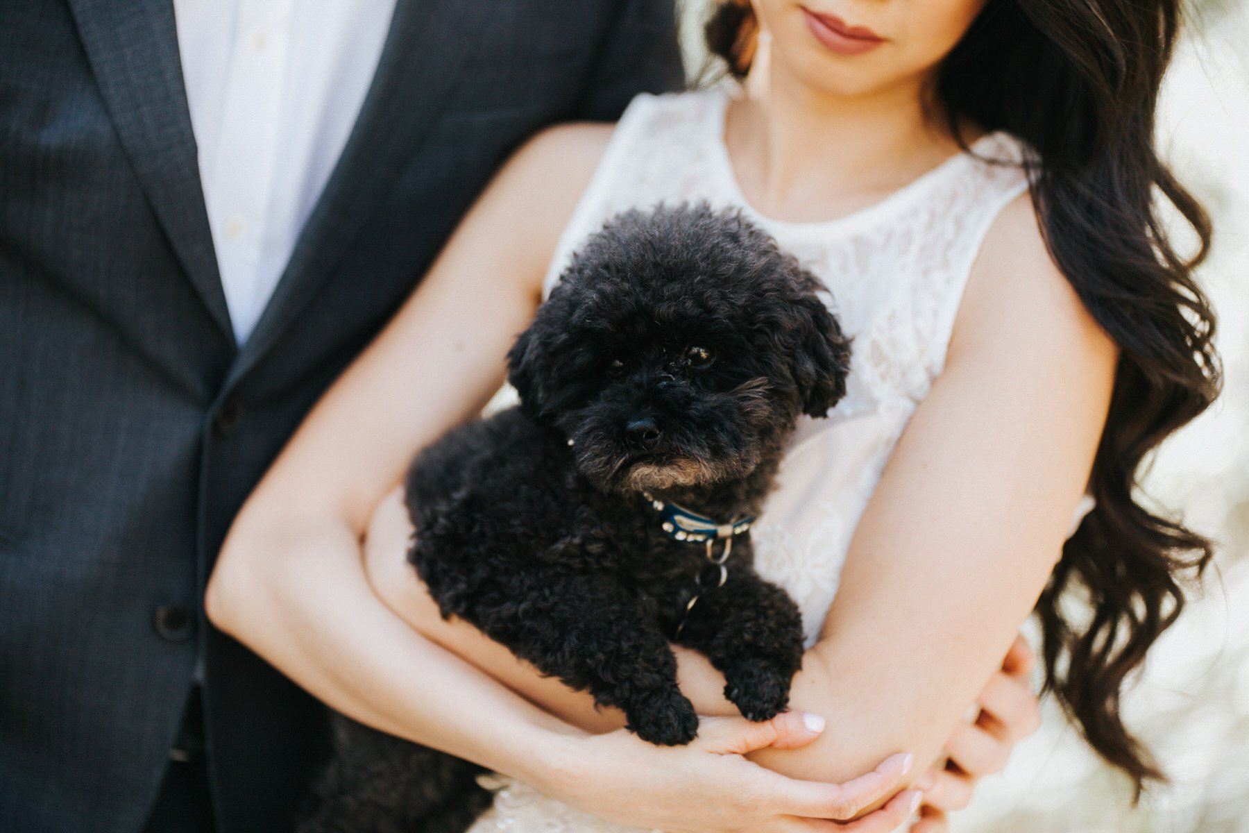 A bride holds her dog during her engagement session