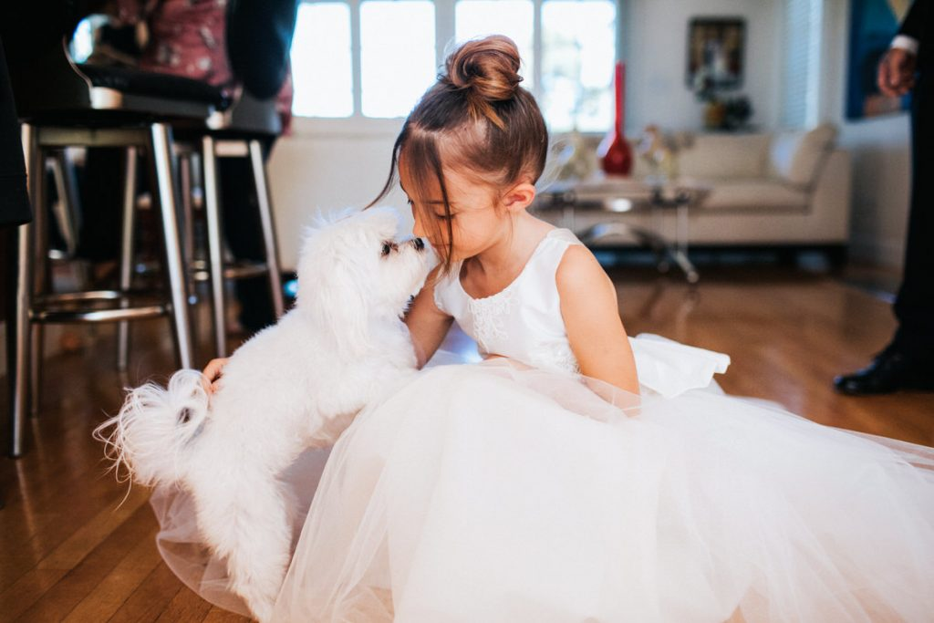 A happy dog kisses a flower girl.
